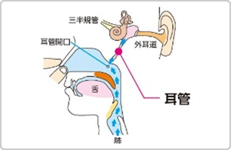 秘伝2MC療法効果利用